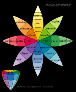 La roue des émotions, un outil de développement personnel