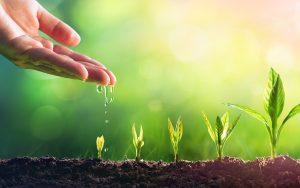 Boostez la croissance de votre entreprise grâce au coaching